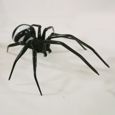 Araignée rayée en verre