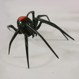 Araignée pointe rouge