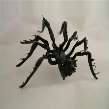 Araignée venimeuse