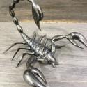 Scorpion réèl en verre