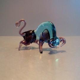 Taureau bicolor