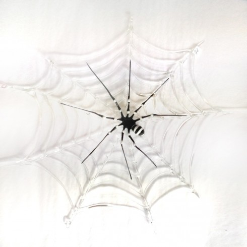 Araignée sur toile en verre