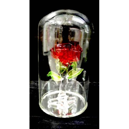 Rose sous globe en verre en verre