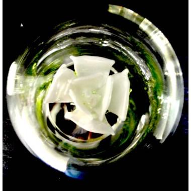 Rose en verre blanche sous globe
